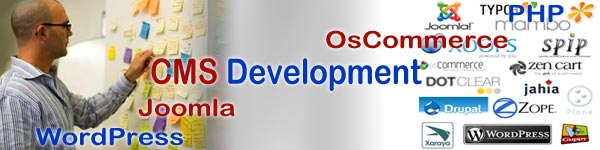 CMS Development & Customization